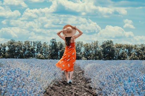 Back View Photo of Woman in Floral Dress and Sun Hat Standing Under Blue Sky in Blue Flower Field