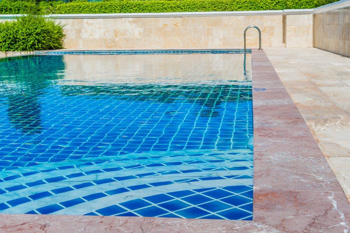 Brown Concrete Pool Near Plant