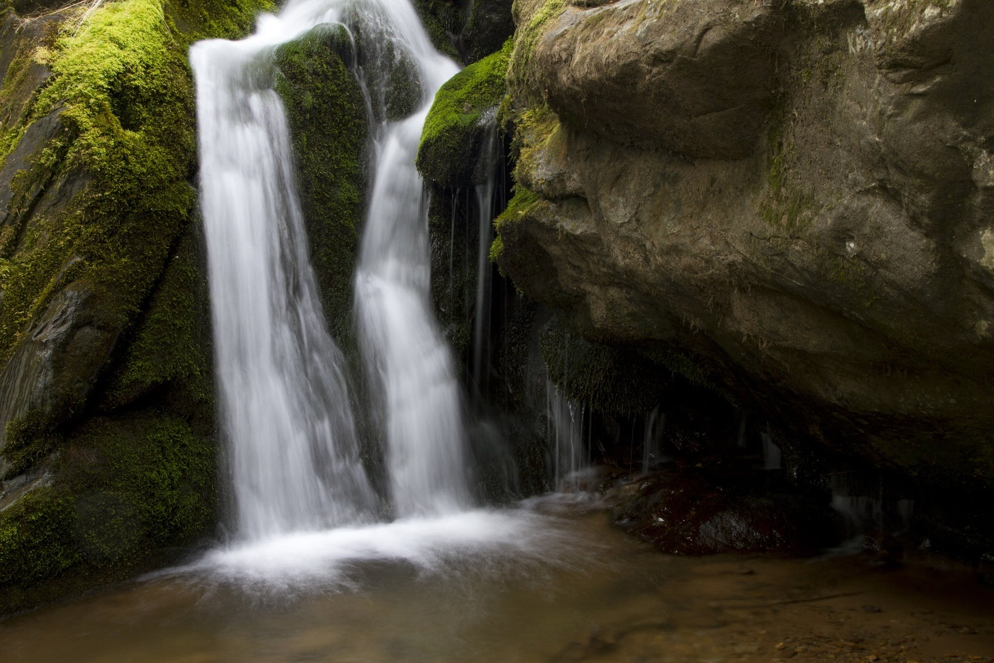 Free stock photo of cascade, flowing, forest, geology