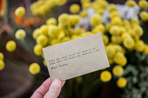 Foto stok gratis alat pembayaran, berbayang, berfokus, fokus dangkal