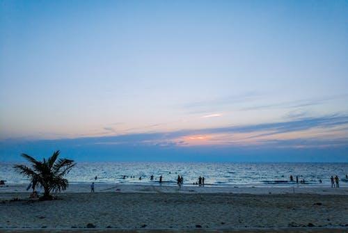 Ingyenes stockfotó homok, horizont, Napkelte, óceán témában