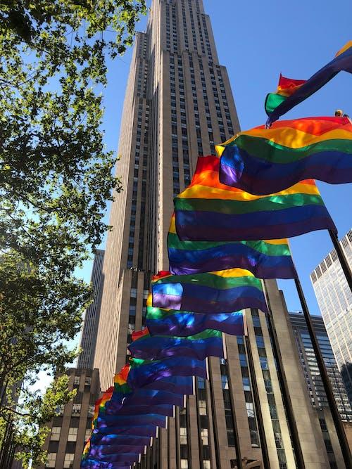 自豪, 骄傲的旗帜 的 免费素材照片