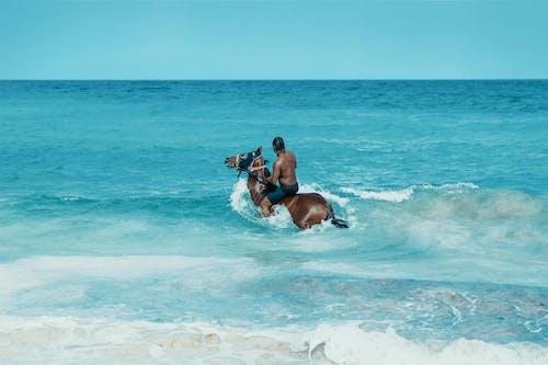 Бесплатное стоковое фото с активный отдых, африканец, афро-американец, берег