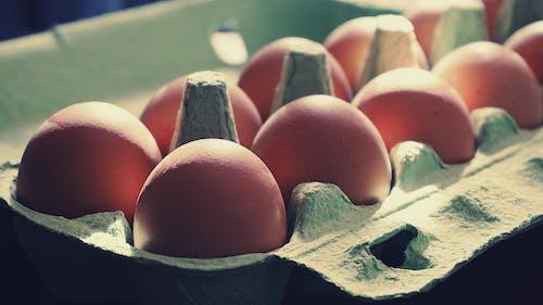 Gratis stockfoto met bruine eieren, eieren, eierrekje, eten