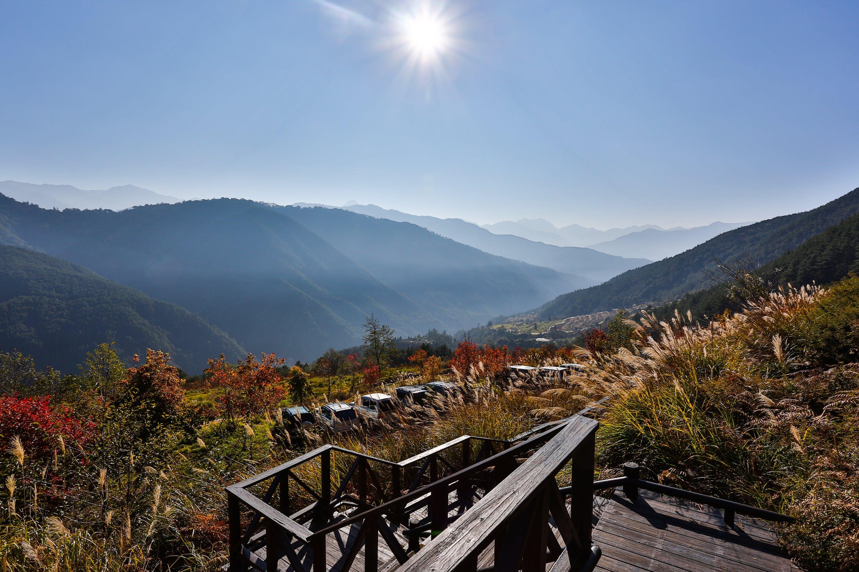 countryside, daylight, fall