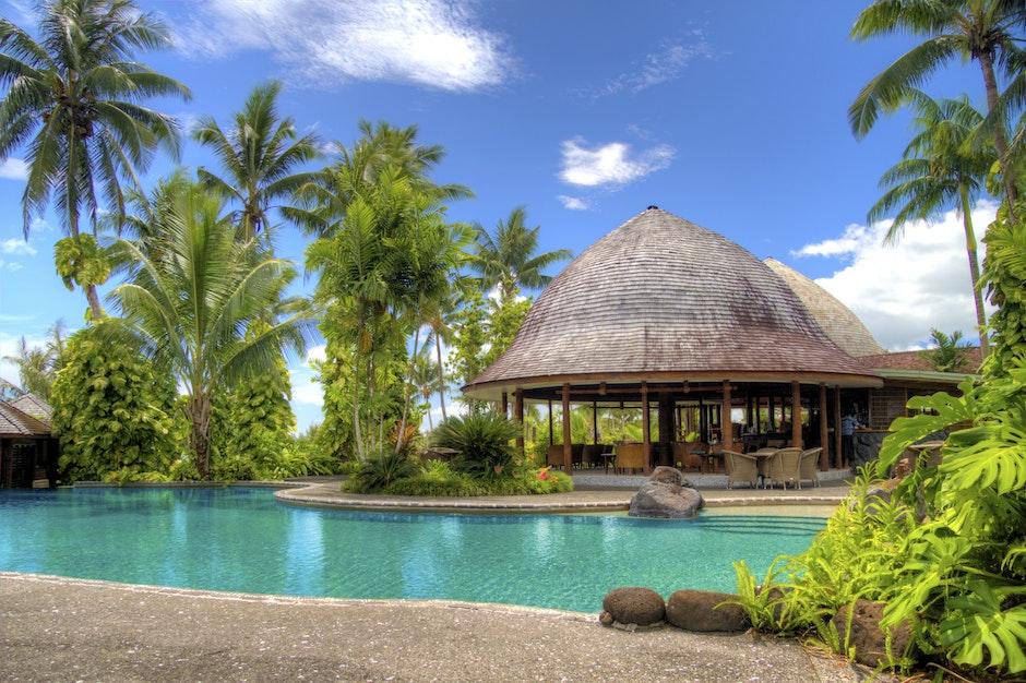 hotel, luxury, palm trees