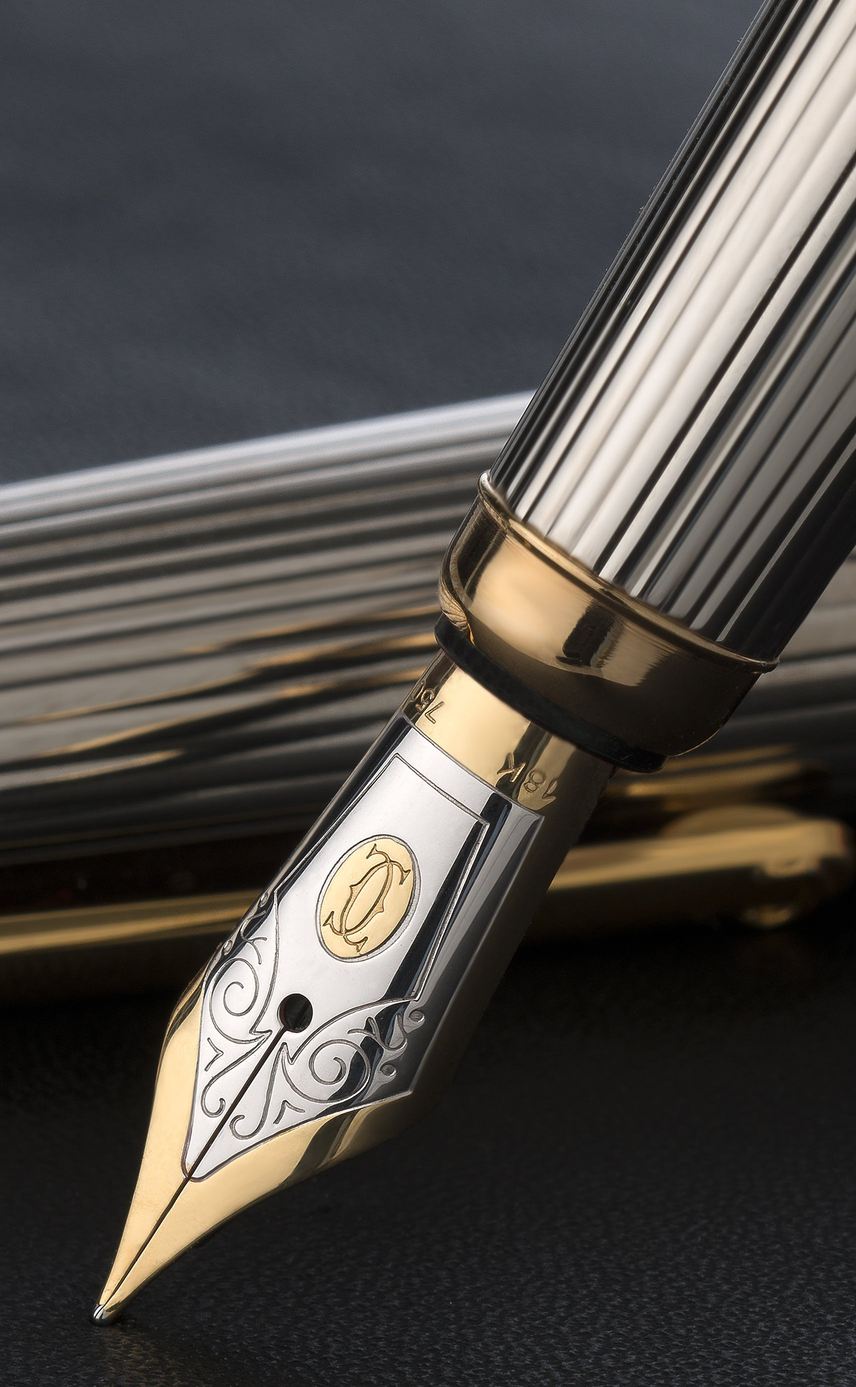 Gold and Silver Fountain Pen