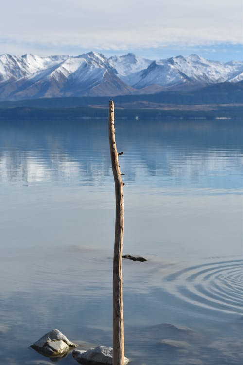 arka fon, Çubuk, dağ, Doğa Ana içeren Ücretsiz stok fotoğraf