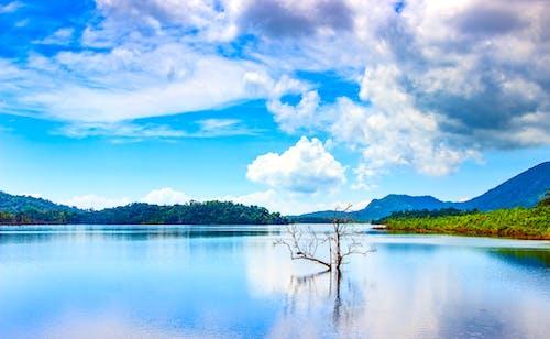 Fotos de stock gratuitas de agua, cielo, escénico, idílico