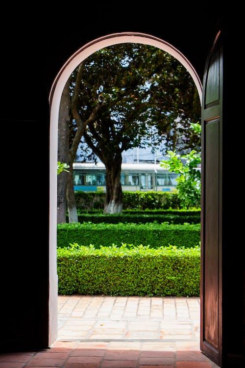 Immagine gratuita di alberi, architettura, entrata, estate