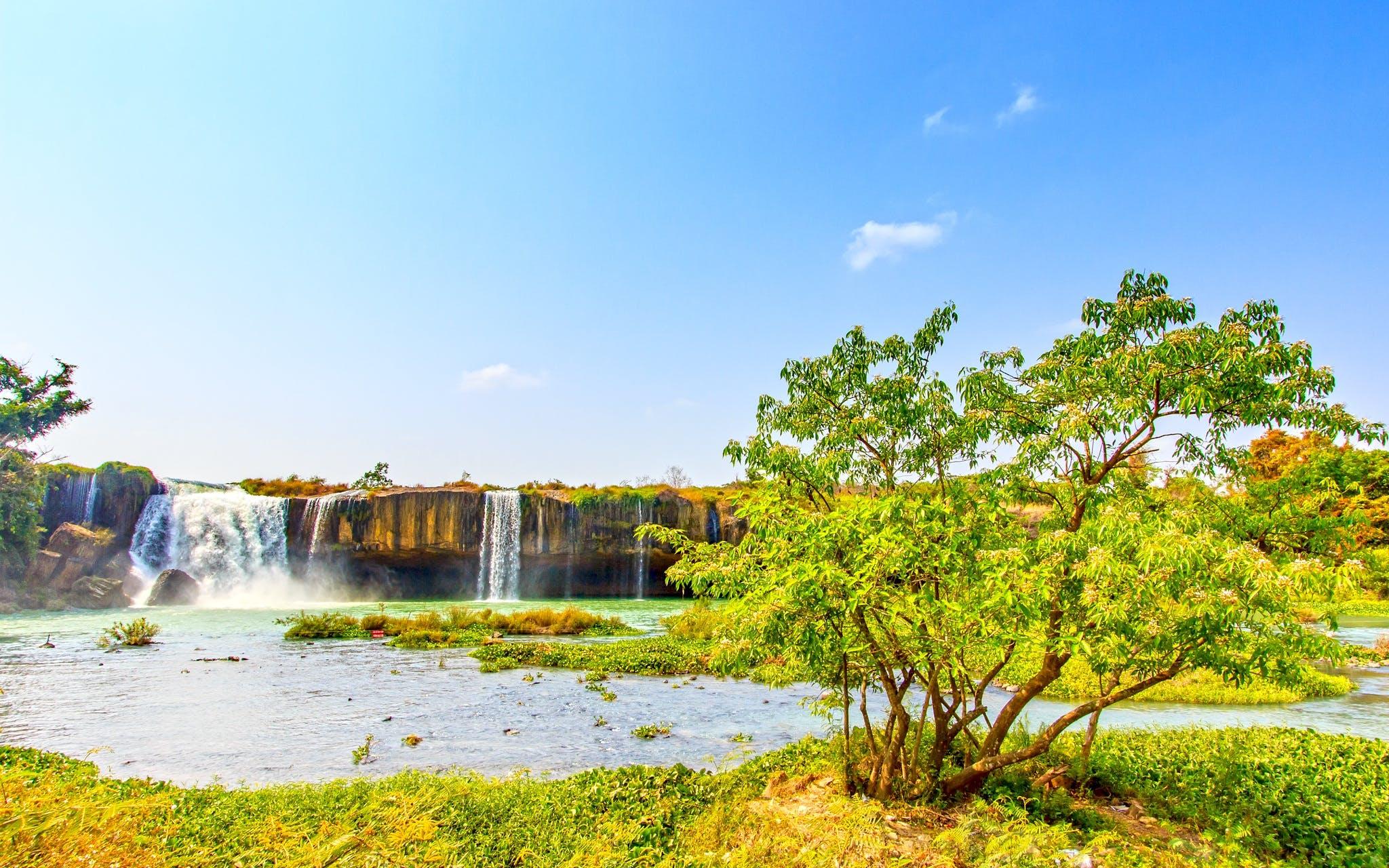 Fotos de stock gratuitas de agua, árbol, cascadas, césped