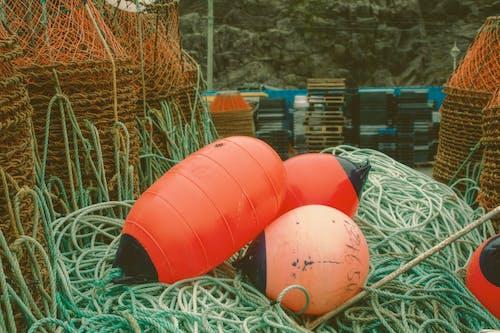 Kostnadsfri bild av fiske, flottörer, kanada, nät