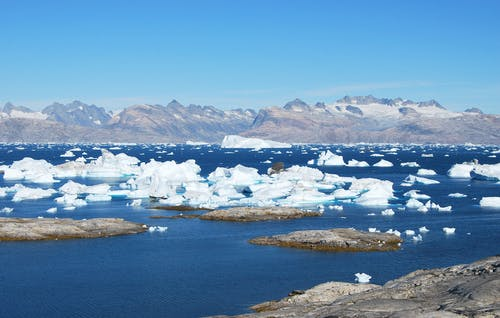 Foto d'estoc gratuïta de àrtic, congelat, fiord