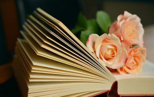 Бесплатное стоковое фото с знания, исследования, книги, литература