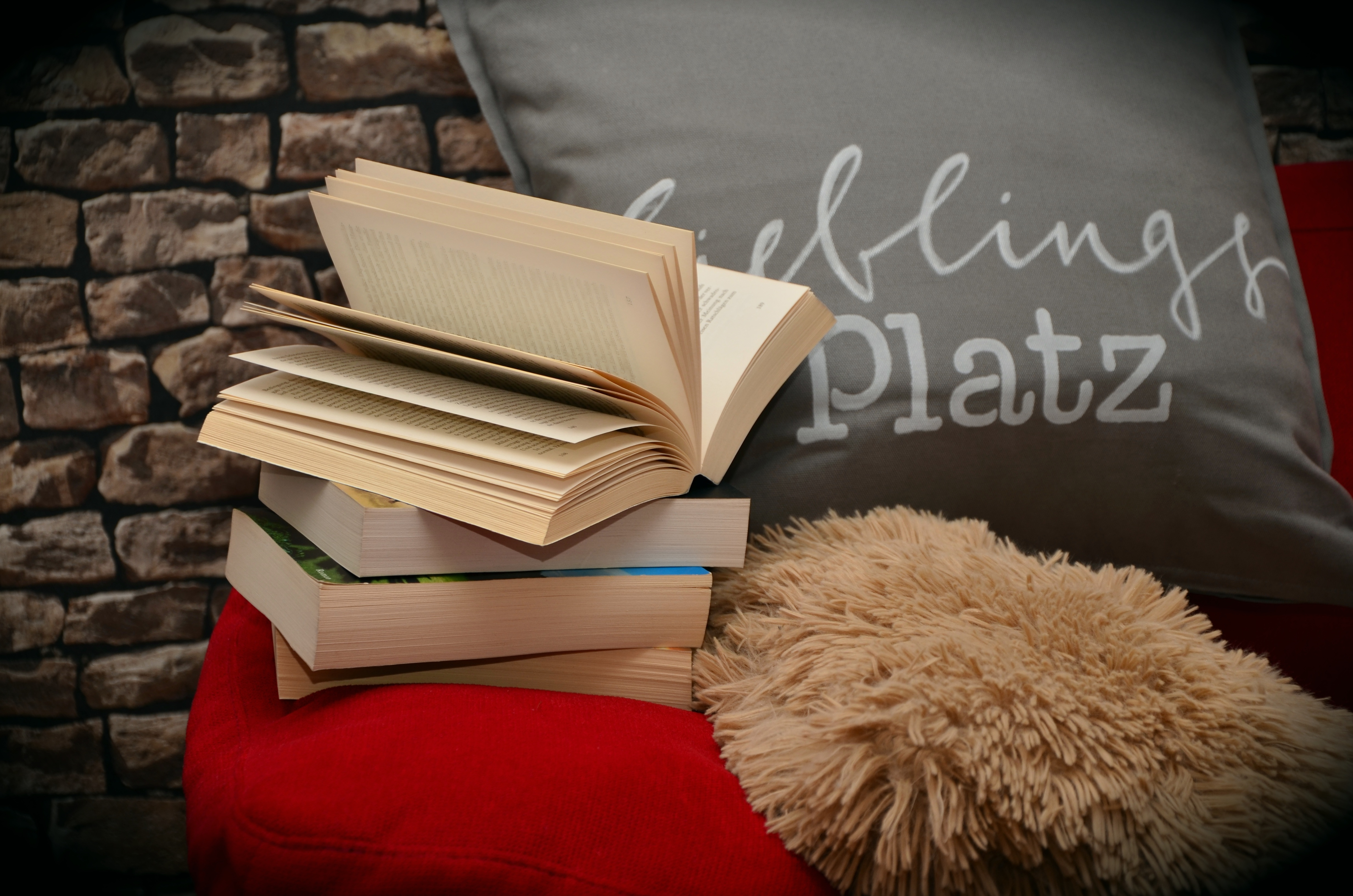Assorted Books and Grey Throw Pillow