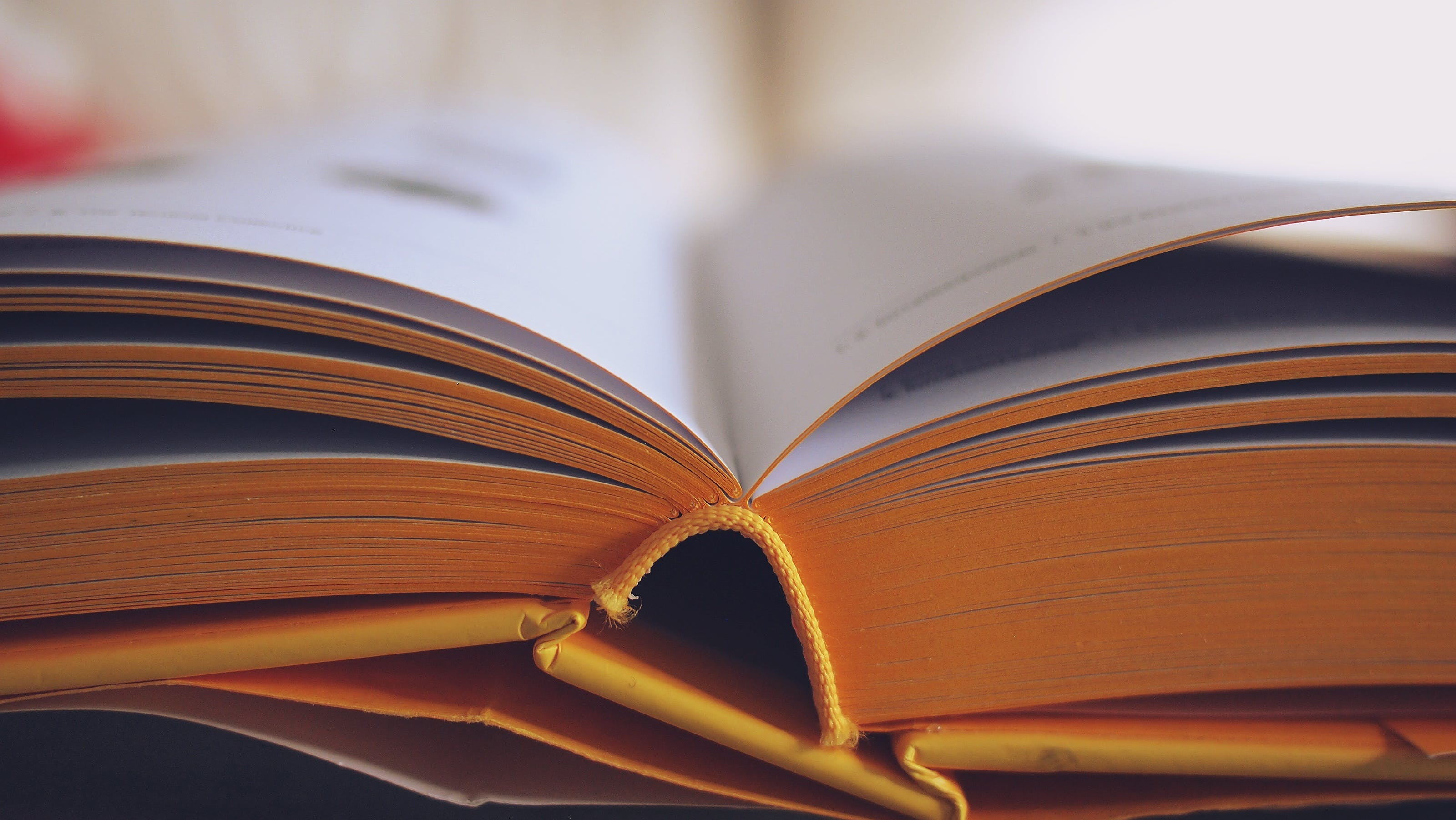 Selective Focus Photography of Opened Book