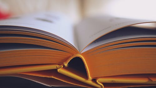 Δωρεάν στοκ φωτογραφιών με ανάγνωση, βιβλιοθήκη, βιβλιοπωλείο, γνώση