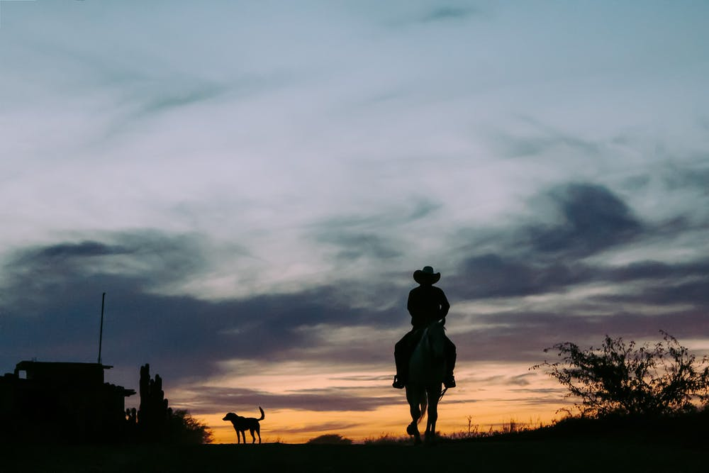 Silhouette of a man riding a horse. | Photo: Pexels