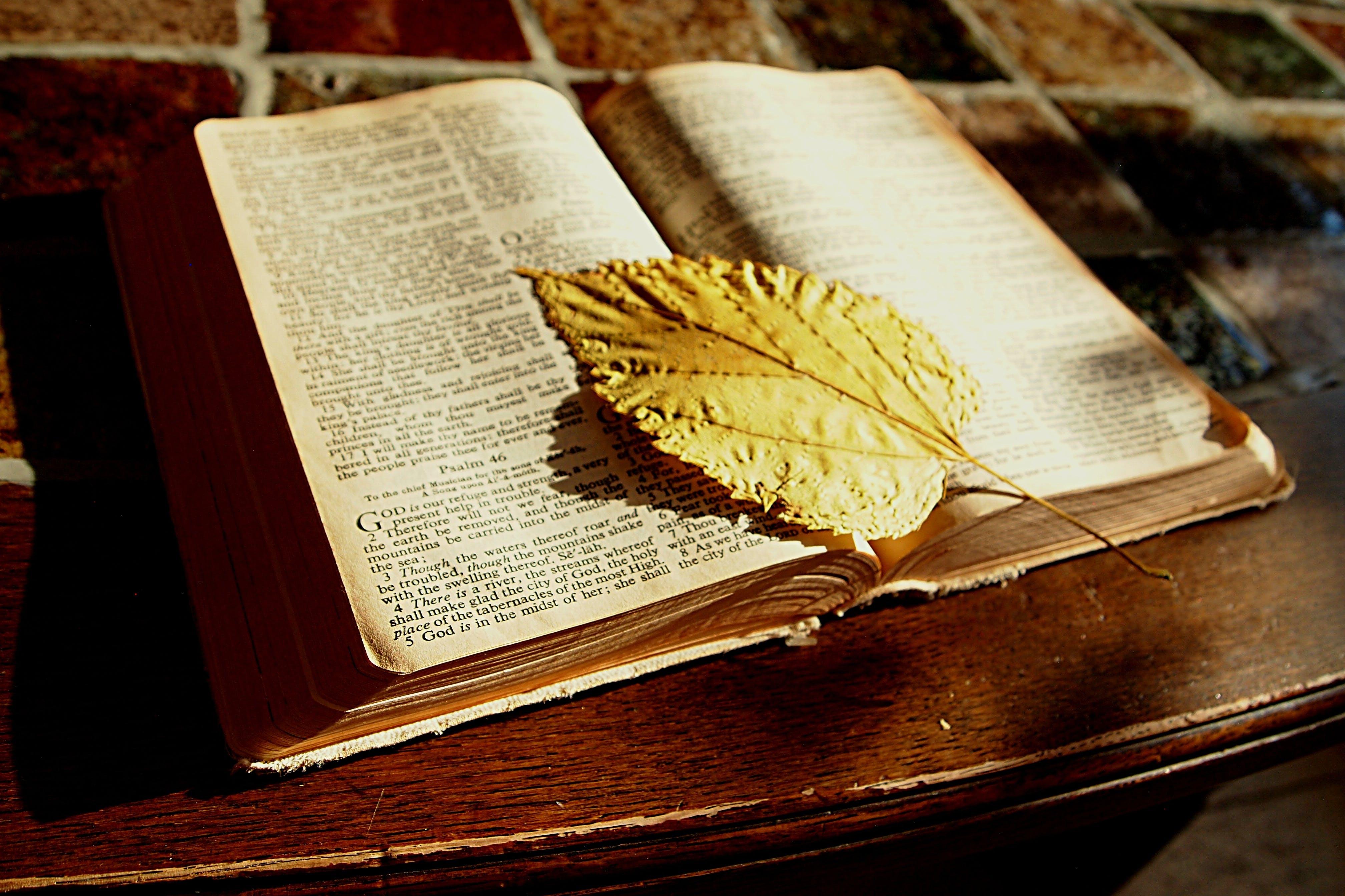 Free stock photo of bible, book, bookmark, christian