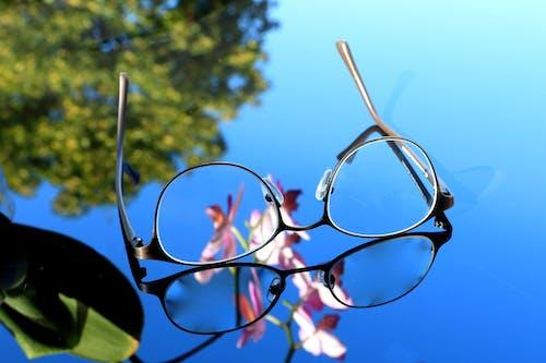 Fotobanka sbezplatnými fotkami na tému detailný záber, dioptrické okuliare, farba, jasný