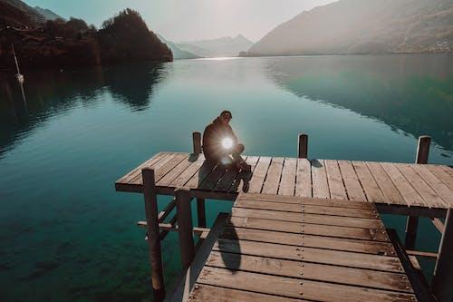 Foto d'estoc gratuïta de Alps suïssos, arbre, atracció turística, bell paisatge