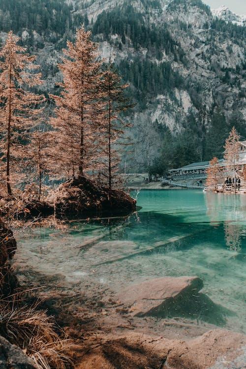 blausee, вид, вода