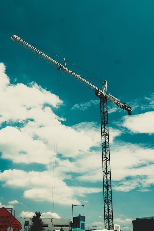 คลังภาพถ่ายฟรี ของ นกกระเรียน, สูง, อุปกรณ์, เครื่องจักรกลหนัก