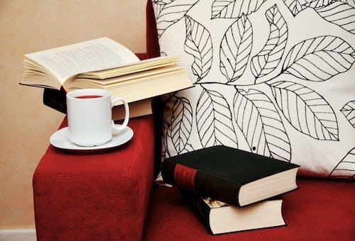 Δωρεάν στοκ φωτογραφιών με ανάγνωση, άνεση, άνετα, βιβλία