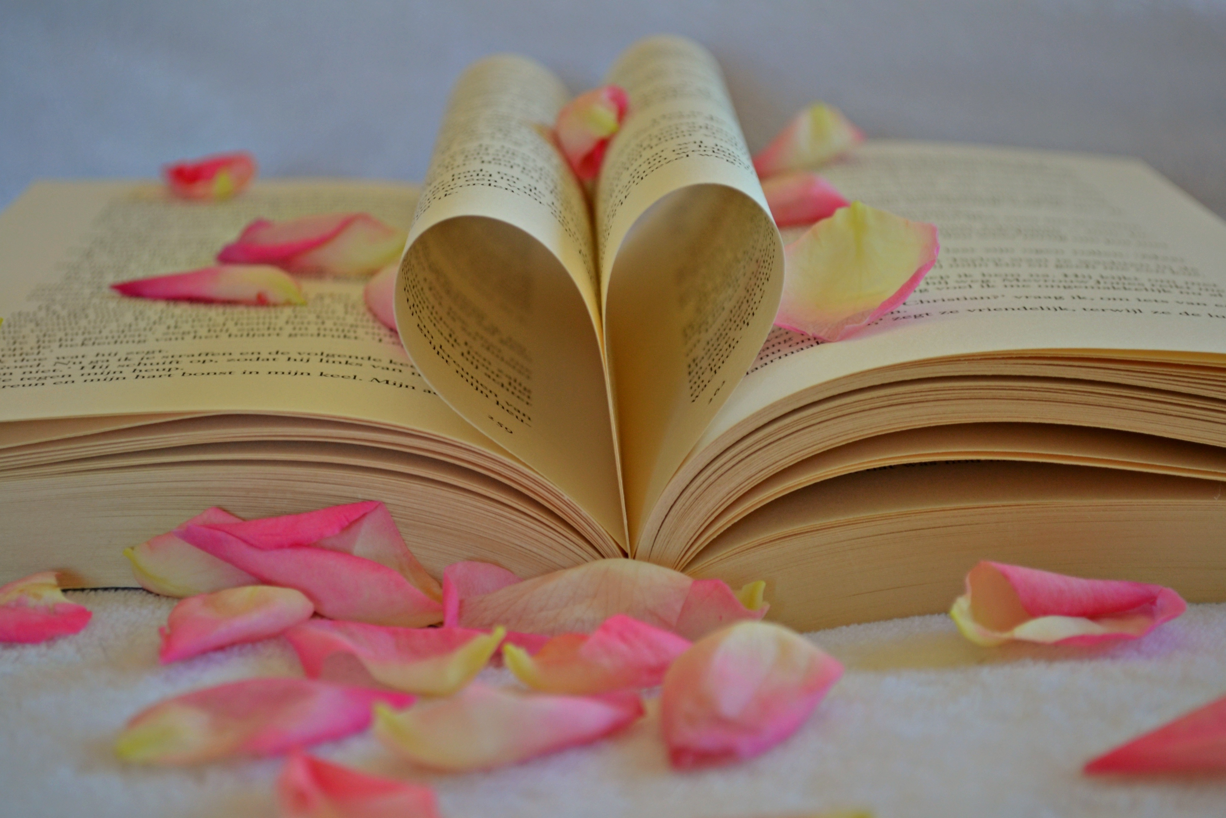 Flower Petals on Book