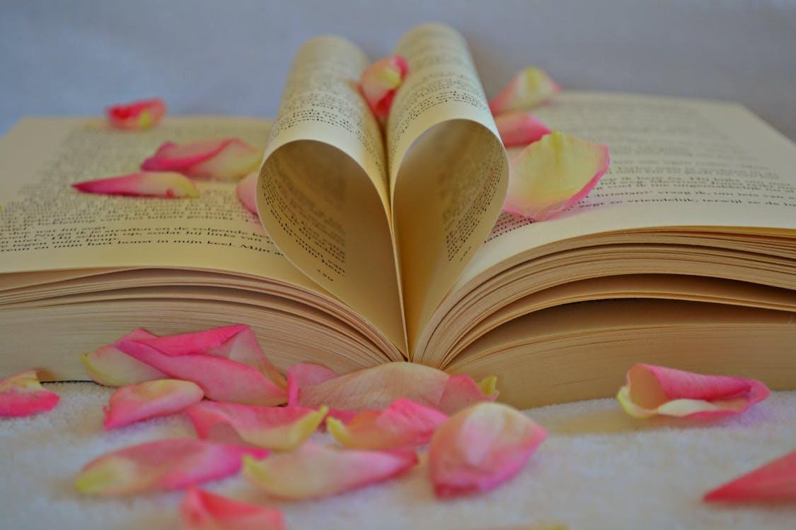 Flower Petals on Book
