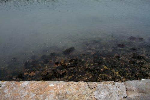 Photos gratuites de eau, irlande, lunatique, rural