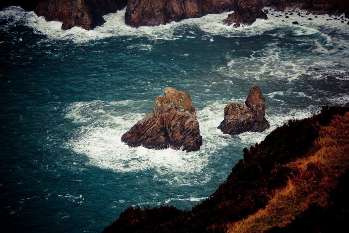 atlantický oceán, dedinský, divý