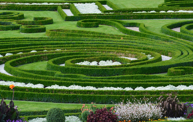 Free stock photo of garden, park, gardening, hanover