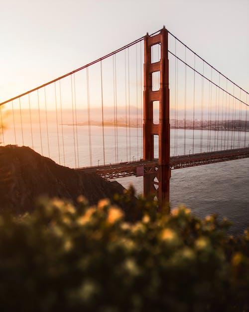 Fotobanka sbezplatnými fotkami na tému architektúra, Golden Gate, Golden Gate Bridge, infraštruktúra