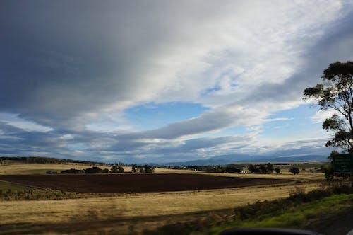 Free stock photo of australia, blue, cloud, dry grass