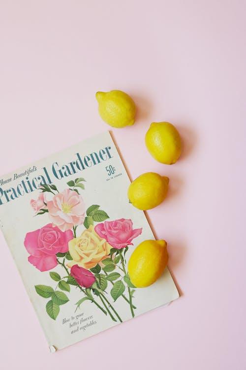 журнал на светло розовом столе рядом с четырьмя лимонами