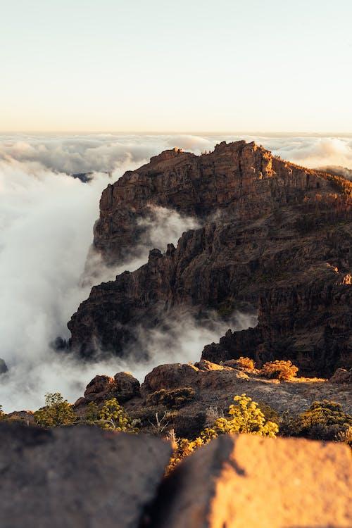 Montaña Cubierta De Niebla