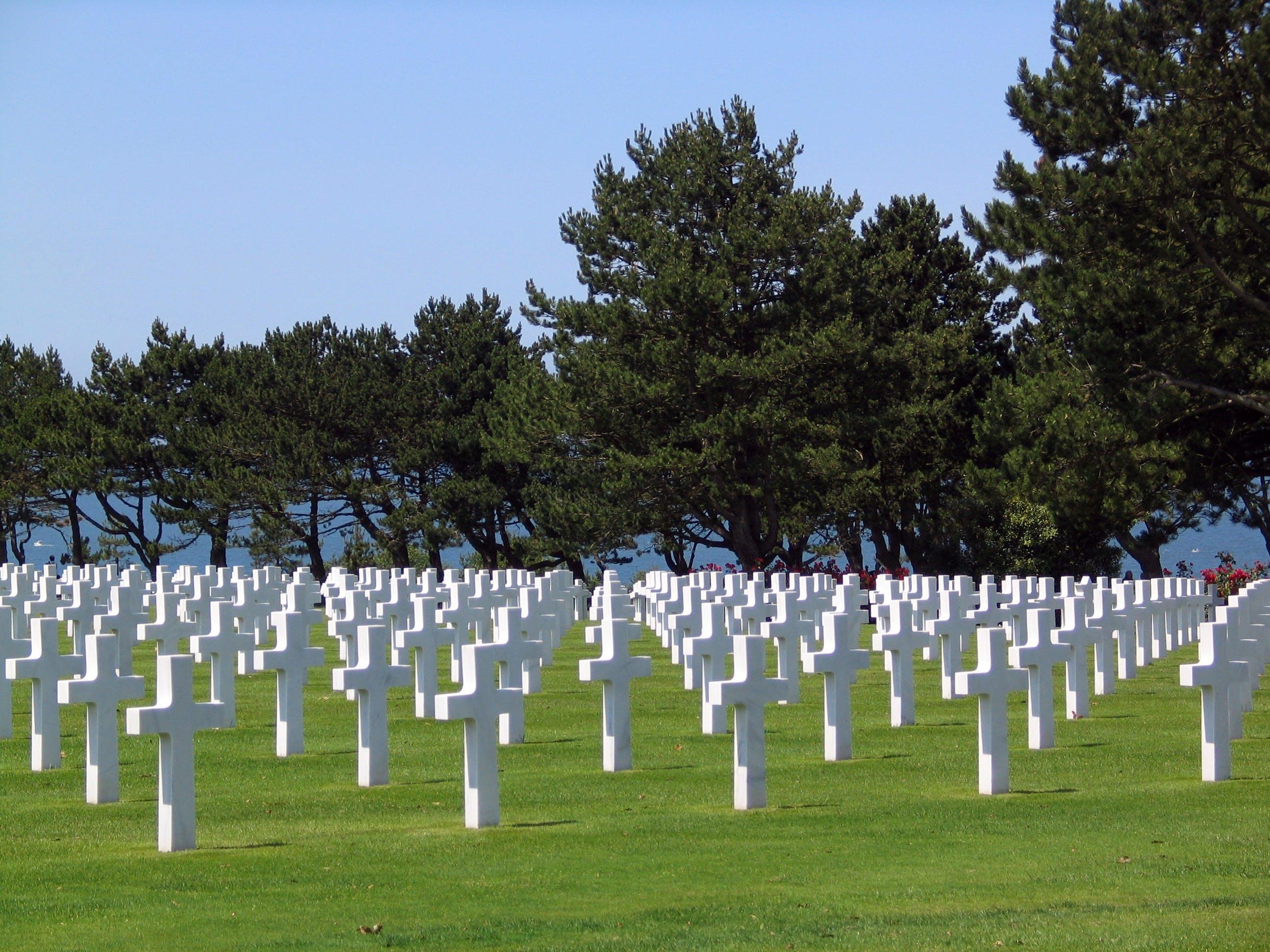 Foto d'estoc gratuïta de arbres, caigut, cementiri, creu