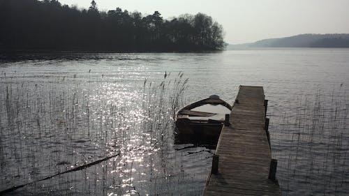 Foto profissional grátis de água, barco, cenário, grama