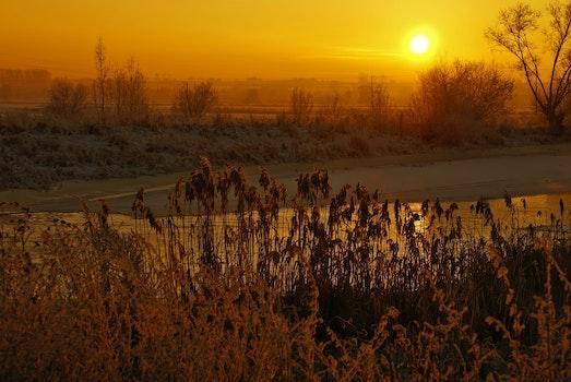 Free stock photo of light, landscape, sunset, water