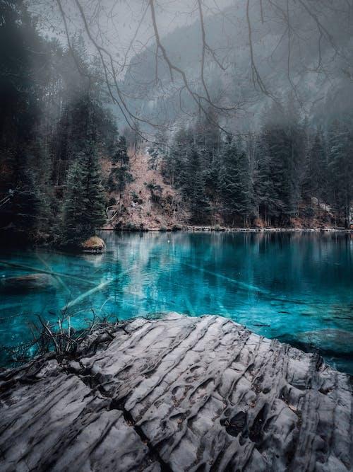 Free stock photo of bern, blausee, blue lake