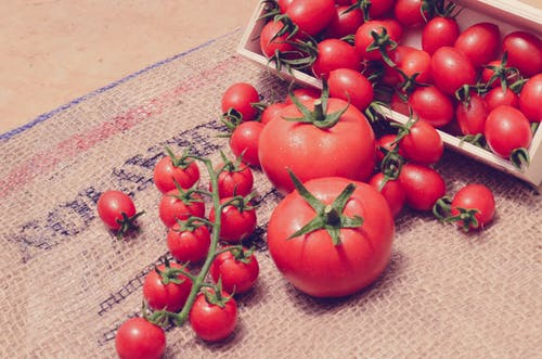 Free stock photo of farm, fresh vegetable, fruits, tomatoes
