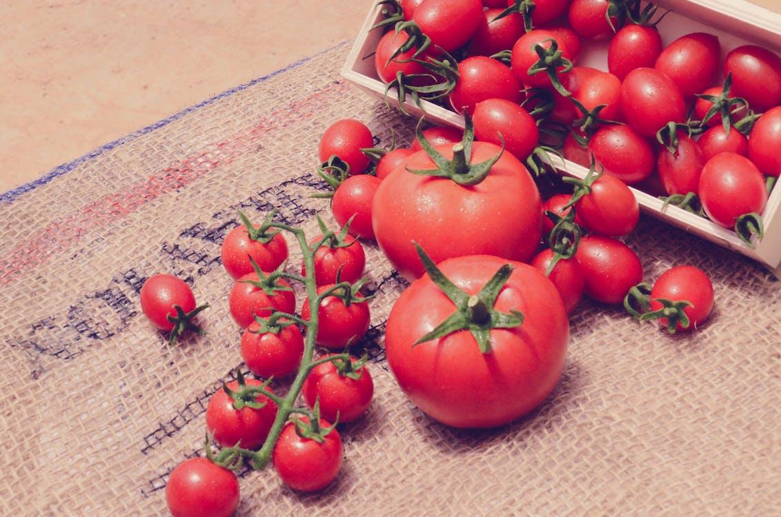 azienda agricola, fattoria, frutta