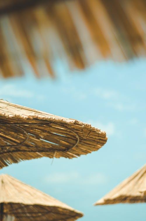 Immagine gratuita di cielo azzurro, ombrelli, ombrello di bambù