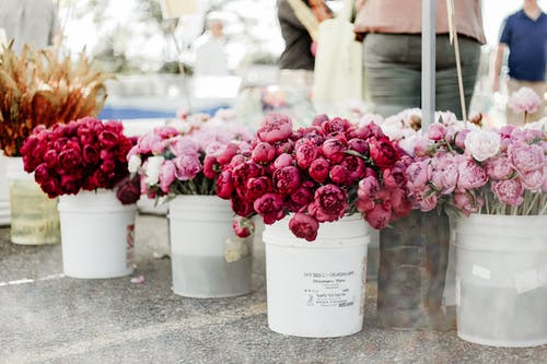 Flowers In White Buckets