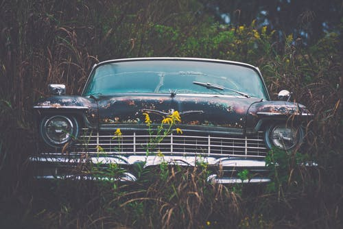Vintage Car Parked Besides Green Plants