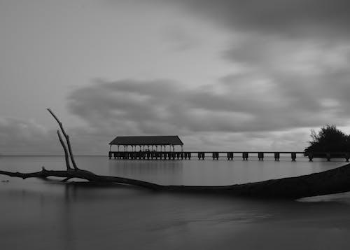 Immagine gratuita di alba, baia di hanalei, bianco e nero, kauai