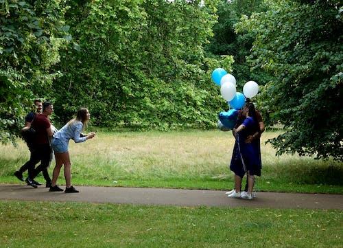 Gratis stockfoto met blauw, blijdschap, bomen, kerel