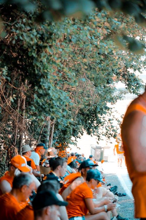 Безкоштовне стокове фото на тему «Canon, raceday, rolex, апельсин»