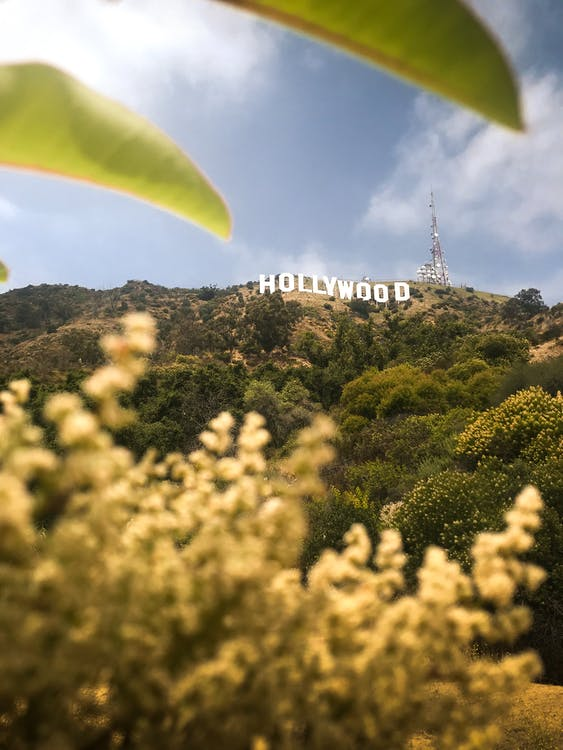 Hollywood, Kalifornia, maisema